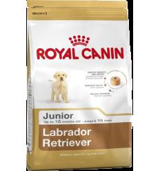 Royal Canin Puppy Large (Labrador Retriever) Arròs 3 Kg. Pinso Gossos Joves Races Grans Dieta Normal Arròs Au