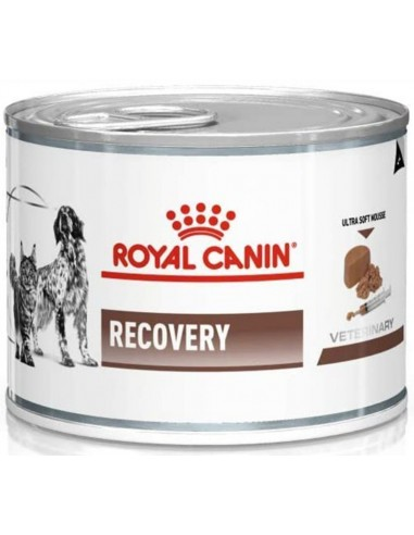 Royal Canin Veterinary Diet Dog/Cat Adult Recovery Mousse 195 gr 9003579307717